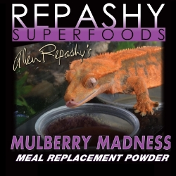 Mulberry Madness Seasonal...