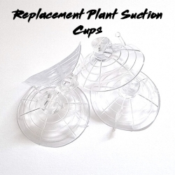 Replacement Reptile Plant...